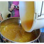 miel versé dans le bac à décantation
